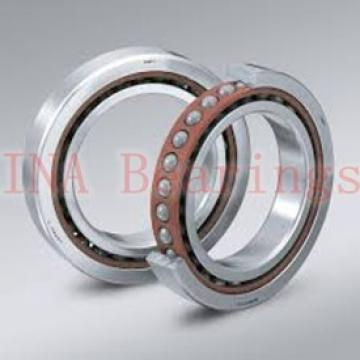 INA 2009 thrust ball bearings